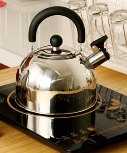 Выбор чайников со свистком в Долайн